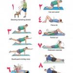 تمرین درمانی کمر