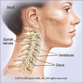 spine-mobi-c-neck-ill